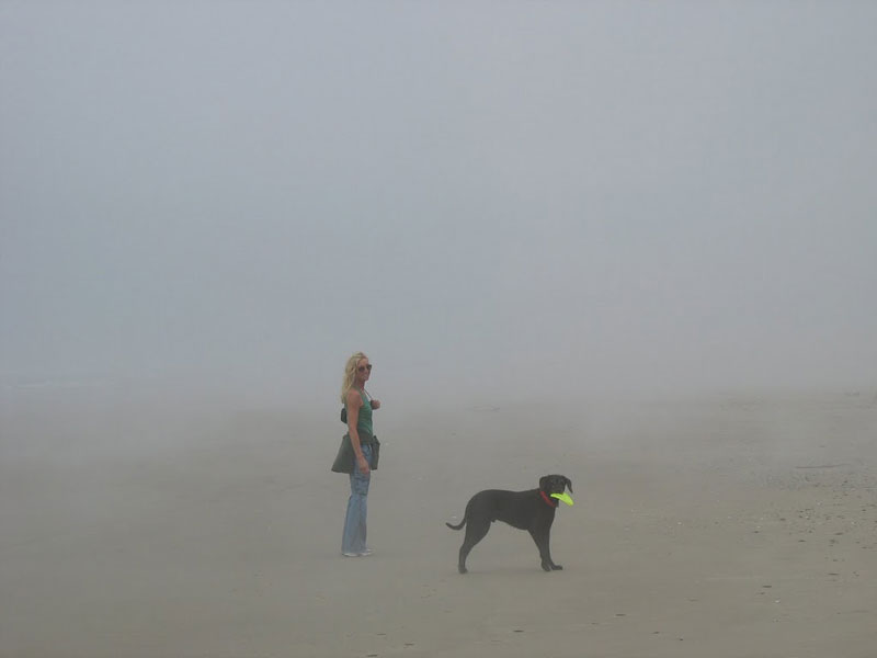 Will the mist stay or will it go?  Who cares!  It's always a great day on the Oregon Coast.