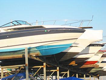 Boats at the marina
