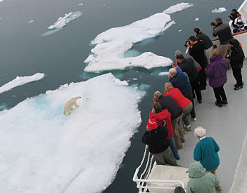 The bear was striking a pose about twenty-five feet from the ship.