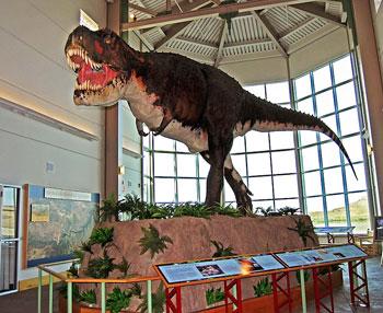 Life-sized model of a tyrannosaurus rex at the Fort Peck Interpretive Center in Montana. Photo by Esha Samajpati.