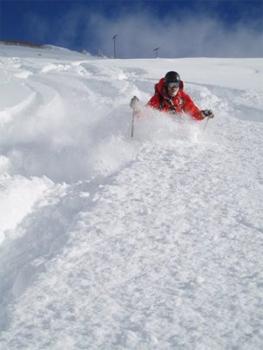Powder skiing at Snowbasin Utah. photo SkiUtah.com