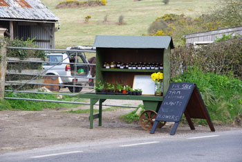 Many farms sell jams, vegetables?, plants and flowers at their gates with honesty boxes in Dorset.