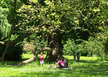 A local family out for a picnic, Chateau Gardens