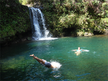 Wade from No Ka Oi Adventures knows all the hidden waterfalls along the road to Hana. Photos by Connie Maria Westergaard except as noted.