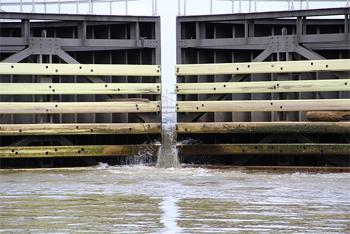 Bayou Locks