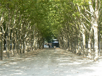 The city's biggest park, Jardin Public, in Bordeaux.