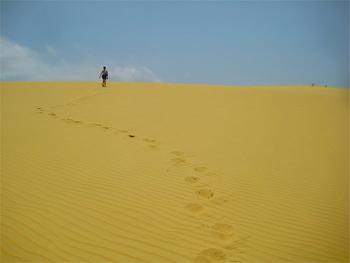Sand dunes in Mozambique. photo by Jennifer Delaney.