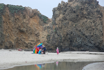 Pfieffer Big Sur Beach scene.