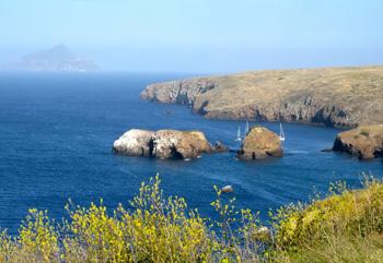 Anapaca Island.