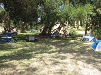 Tent sites at Santa Cruz island, Channel Islands, CA.