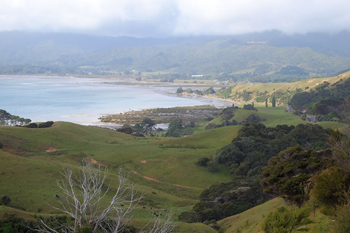 View of Coromandel Peninsula on the road to Coromandel Town. photos by Max Hartshorne.