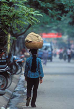 A young lady carries a load with grace and style on Hang Bo Street, Hanoi. (Graham Simmons photo)