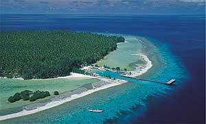 Aerial view of Menyawakan Island, in the Java Sea. photos by Lisa Goins.
