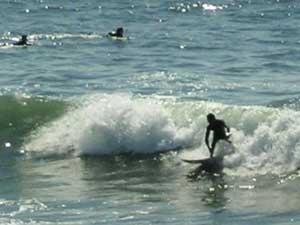 Surfers at Oceanside