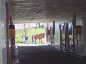 Clairborne Farm