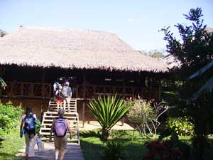 The lodge in the jungle