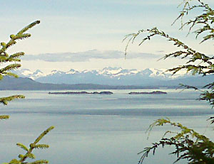 A view from Icy Strait