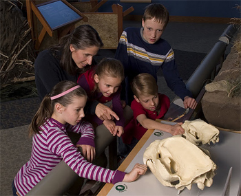 Family workshop at Draper Museum, Buffalo Bill Historical Center. photo courtesy Buffalo Bill Historical Center.