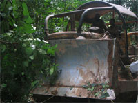 Bulldozer makes its way through the forest. photos by Witt Sparks.