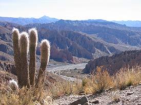 Outside of Tupiza, Bolivia