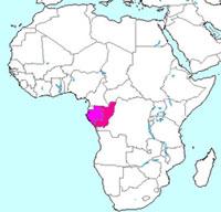 Gabon and The Republic of Congo
