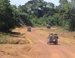 The road from Bakoumba to the Congolese border was well-maintained and in good shape.