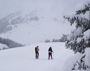 Snowshoeing in the Alps is like being in another world.