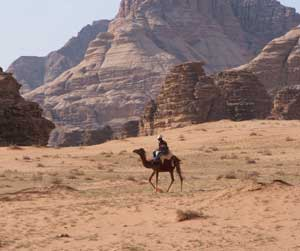 The harsh climate of the desert is one reason for the Bedouins' tradtition of hospitality.