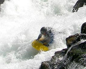 Whitewater sledging through the tunnel chute - photo courtesy of Aspen Seals