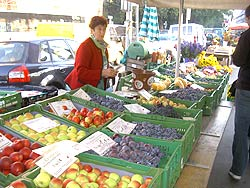 The farmer's market in Graz, starts every day at 7 am. photo: Max Hartshorne.