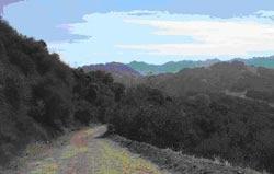 Topanga Canyon.
