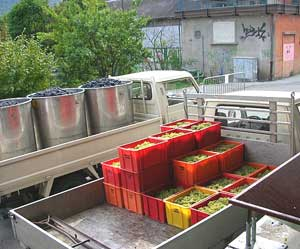 The Provins Valais winemaking cooperative buys from 5,000 growers in the Rhone valley of Switzerland.