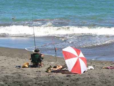 Enjoying a day at the beach, near New Plymouth.