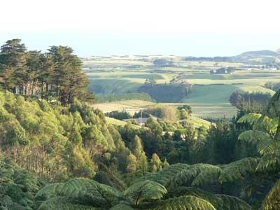 View from the veranda at the Kaitake Lodge, in Oakura.