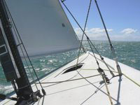 Sailing in Auckland Harbor