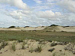 Provincelands