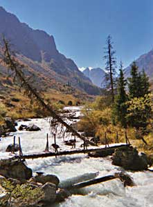 Beautiful Al Archa gorge is less than an hour by car from the capital of Kyrgyzstan. Michael Cook photos.