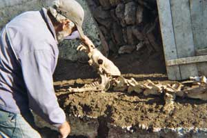 Vasili the shepherd and the prehistoric beast he unearthed