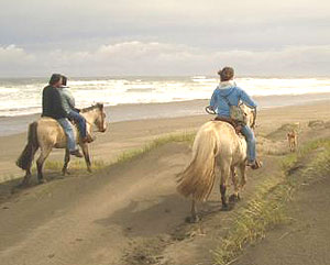 Horseback riding in Chiloe National Park in Chile