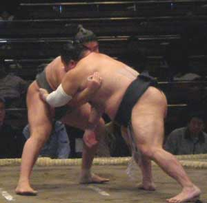 Junior sumo wrestlers begin a bout.