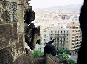 View of Barcelona from Gaudi's Sagrada Familia
