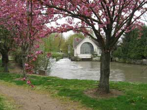 The crabapple trees in bloom next to a picturesque little mill along the La Vesle river
