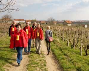People walk among vineyards in the Czech Republic.