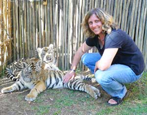 Petting cubs at the Tiger Encounter