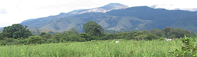 Guanacaste cowboy country - photo by Laurie Ellis