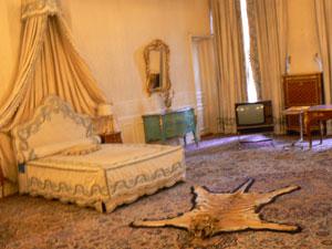 A room at the Saad Abad