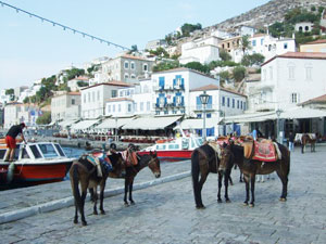 Hydra Town - The two means of transport available: water taxis and donkeys