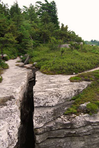 Deep Crevices along the trail