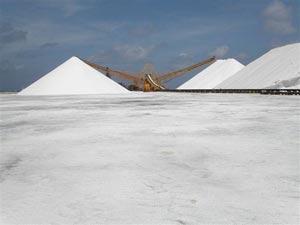 Salt mine in Bonaire. Photo: Cargill