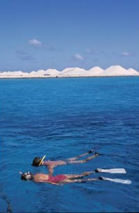 Snorkeling the crystal clear waters of Bonaire. photo by Toccoa Switzer.